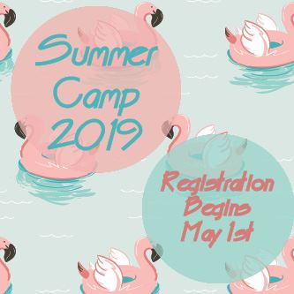 Summer Camp 2019 News