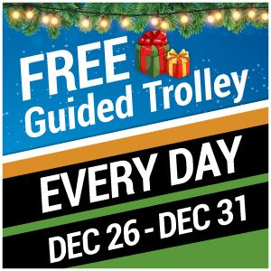 Holiday Trolley 2019 Flyer