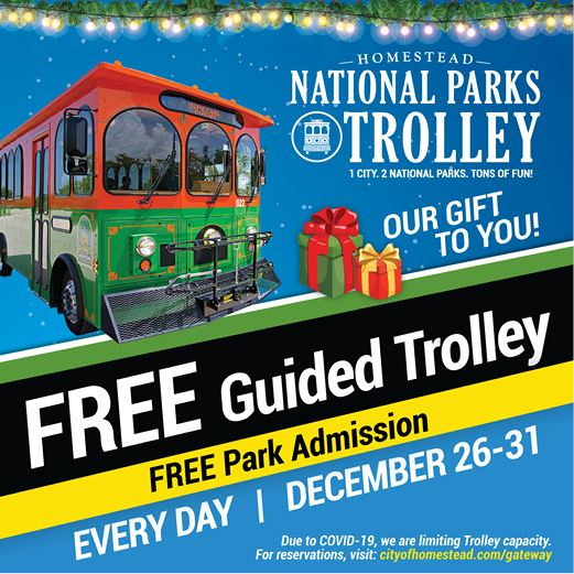 Holiday Trolley 2020 Web News